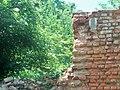 Dauzgiriai palace ruins 2.jpg