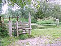 Dawn's Stile near Charlton all Saints - geograph.org.uk - 871137.jpg