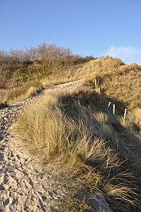 De Haan duinen R03.jpg