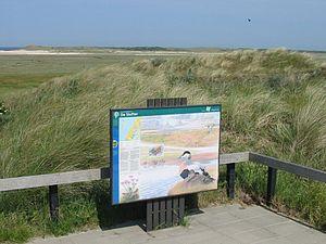 Frisian Islands - Image: De Slufter Texel