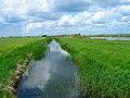 Dengemarsh Sewer - geograph.org.uk - 448984.jpg