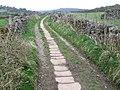 Derwent Valley Heritage Way - geograph.org.uk - 1248154.jpg