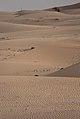 Deserto - Desert of Abu Dhabi (17153701937).jpg