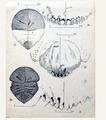 Dessin manuscrit de Raymond Mamet.png