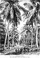 Die Gartenlaube (1876) b 381.jpg