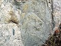 Dike intruding tillite (Nipissing Diabase & Gowganda Formation, Paleoproterozoic; Percival Lake roadcut, Ontario, Canada) 18 (32784771547).jpg