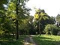 Dirt road in Máriabesnyő pilgrimage site. - Máriabesnyő-Gödöllő, Hungary.JPG