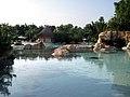 Discovery Cove, Orlando - panoramio (13).jpg