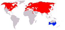 Distribution of Vulpes Vulpes.png