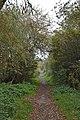 Ditton Lane, Moreton 2.jpg