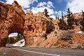 Dixie National Forrest, Utah (3447038828).jpg
