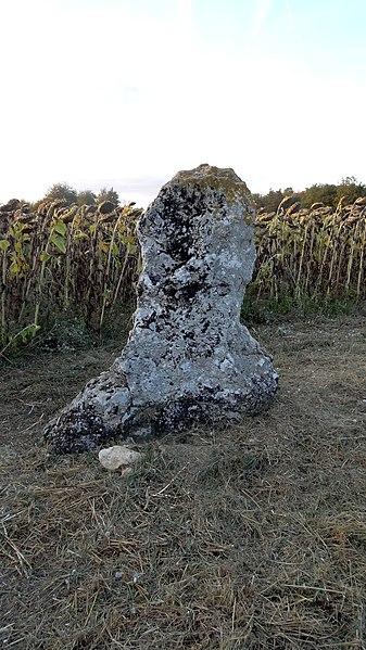 Menhir de la Grande Pierre, Averdon, Loir-et-Cher, France.
