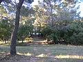 Domaine des Treilles (Var) 06.JPG