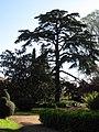 Domestic garden - Parc del Laberint d'Horta - Barcelona.jpg