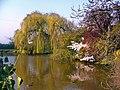 Donington - panoramio.jpg