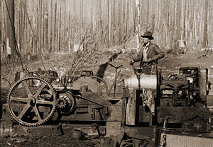 "Gyppo logger - A ""donkey puncher"" on the job at gyppo logging operation in Tillamook County, Oregon. (October 1941)"