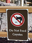 File:Dont feed the coyotes.JPG
