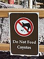 Dont feed the coyotes.JPG