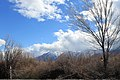 Douglas County - panoramio (66).jpg