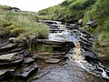 Dowstone Clough - geograph.org.uk - 476239.jpg