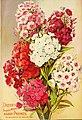 Dreer's garden 1902 calendar (1902) (14760829621).jpg