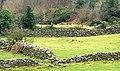 Drystone walls near Bryansford - geograph.org.uk - 1141348.jpg
