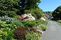 Dunedin Botanic Garden kz11.jpg