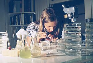 Biologist - Biologist conducting research.