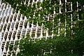 Edifício Gustavo Capanema (10478633766).jpg