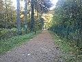 Eingang Mückenwald Ochsenweg.jpg