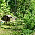 Elbsandsteingebirge bei Rathen (03).jpg