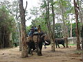 Elephant and rides on it at Bannerghatta National Park 4-24-2011 1-03-15 PM.JPG