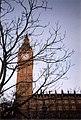 Elizabeth Tower (17365636666).jpg