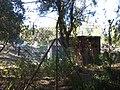 Embalse-de-Bornos-P1420791.jpg