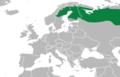Emberiza rustica european distribution 2010-2011.png