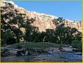 Emerald Pools Trail, Cliff Face 4-29-14o (14143625421).jpg
