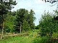 Encounter on Houghton Moor - geograph.org.uk - 181431.jpg