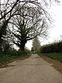 Entrance and driveway to Brampton Hall Farm - geograph.org.uk - 614959.jpg