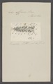 Eolis affinis - - Print - Iconographia Zoologica - Special Collections University of Amsterdam - UBAINV0274 080 14 0002.tif
