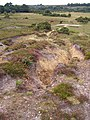 Eroded heathland path, Hasley Hole, New Forest - geograph.org.uk - 236211.jpg