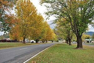 Eskdale, Victoria - Omeo Highway at Eskdale