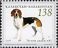 Estonian-Beagle-Canis-lupus-familiaris.jpg