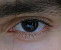 Eye 03.jpg