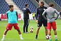 FC Red Bull Salzburg gegen Admira Wacker Mödling (20. Mai 2017) 07.jpg
