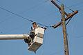 FEMA - 15532 - Photograph by Win Henderson taken on 09-12-2005 in Louisiana.jpg
