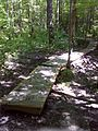 FLT CT07 3.7 mi - Puncheons, 279' long, some same construction as preceding, but most are old 2x4x24 deck on 2x4 stringers - panoramio.jpg
