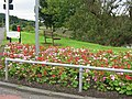 Fairlie picnic area flower garden - geograph.org.uk - 966174.jpg
