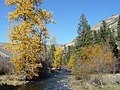 Fall colors, stream and hills, Wallowa-Whitman National Forest (26195908104).jpg