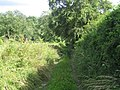 Farm track, Nadder Valley near Teffont Evias - geograph.org.uk - 900939.jpg
