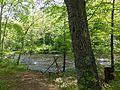 Farmington River Bank fishing spot in Nepaug State Forest.jpg